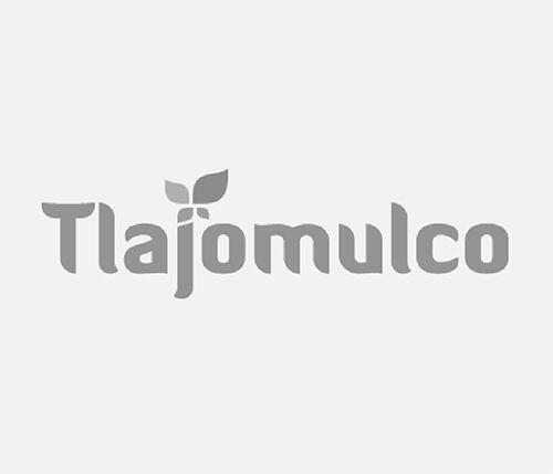 Gobierno Municipal Tlajomulco De Zúñiga